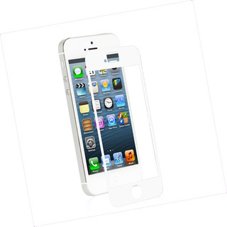 Protection Ecran Transparente Apple iPhone 5/5S/SE iVisor XT Moshi Blanche