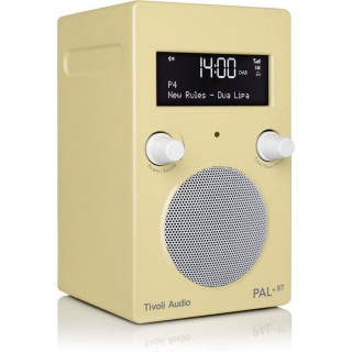 Radio DAB/DAB+/FM PAL+BT Tivoli Edition Limitée Anise Flower Bluetooth